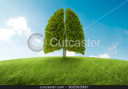 The lungs of Earth stock photo, Tree with form of lungs, oxygen for the earth by Giordano Aita