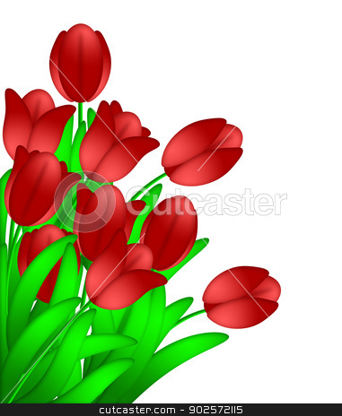 Bunch of Red Tulips Flowers Isolated on White Background stock photo, Bunch of Red Tulips Flowers in Spring Illustration Isolated on White Background by Jit Lim