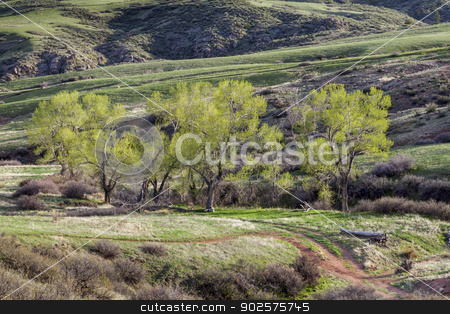 mountain valley in Colorado stock photo, mountain valley with cottonwoods at springtime in Colorado near Fort Collins by Marek Uliasz
