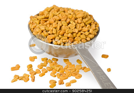 Fenugreek Seeds in Spoon stock photo, A measuring spoon filled with fenugreek seeds against a white background. by Glenn Price