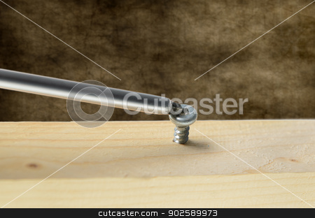 Screw and Screwdriver stock photo, Robertson screwdriver screwing into wood. by Richard Nelson