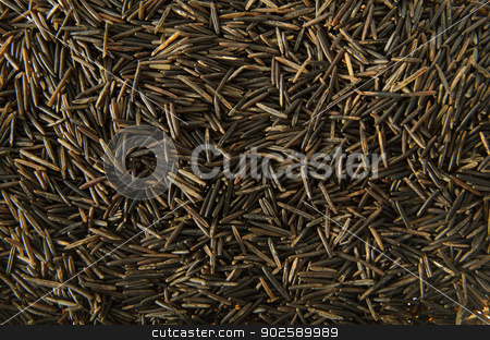 Wild Rice stock photo, A background image of wild rice grains by Richard Nelson