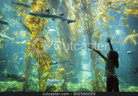 Young Girl Standing Up Against Large Aquarium Observation Glass stock photo, Amazed Young Girl Standing Up Against Large Aquarium Observation Glass Reaching for Leopard Shark. by Andy Dean