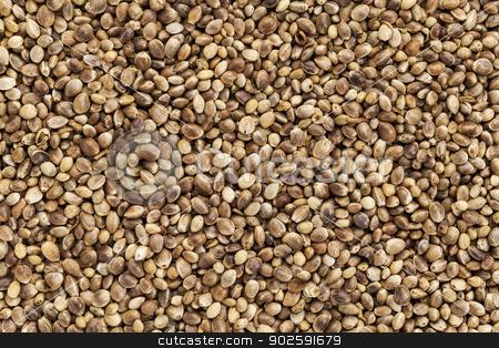 hemp seed stock photo, background of organic dried hemp seeds by Marek Uliasz