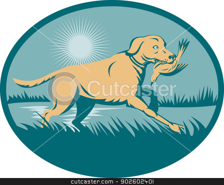 trained Retriever  dog with bird stock photo, illustration of a trained Retriever  dog with bird on wetland  set inside an ellipse. by patrimonio