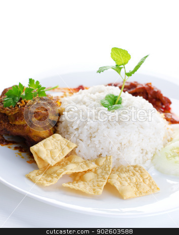 Malay food Nasi lemak stock photo, Nasi lemak traditional malaysian hot and spicy rice dish. Served with belacan, ikan bilis, acar, peanuts and cucumber. White background. Famous malaysian food. by szefei