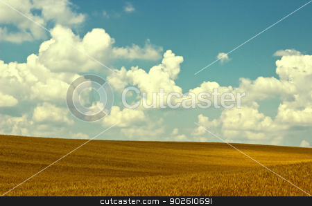 autumn field stock photo, new landscape image with autumn field and cloudy sky by metrue