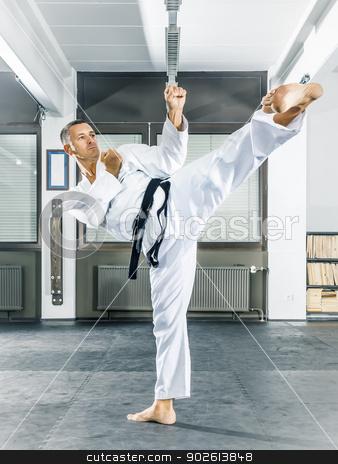 taekwondo stock photo, An image of a taekwondo martial arts master by Markus Gann