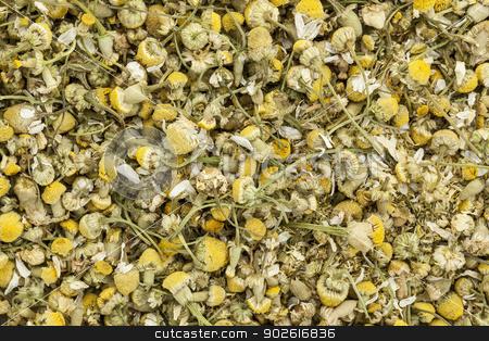 organnic chamonile herb tea stock photo, background of organic chamomile herbal tea by Marek Uliasz