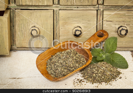 peppermint herbal tea stock photo, peppermint herbal tea with fresh leaves - a pile and rustic wooden scoop with a primitive apothecary drawer cabinet in background by Marek Uliasz