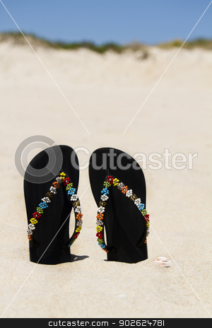 beach sandals stock photo, View of two beach sandals with flower detail stuck on the sand. by Mauro Rodrigues