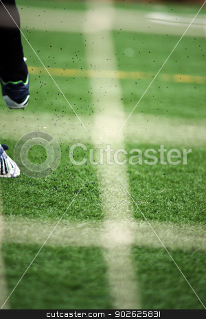 View of a leg kicking a ball stock photo, View of a leg kicking a soccer ball on a game. by Mauro Rodrigues