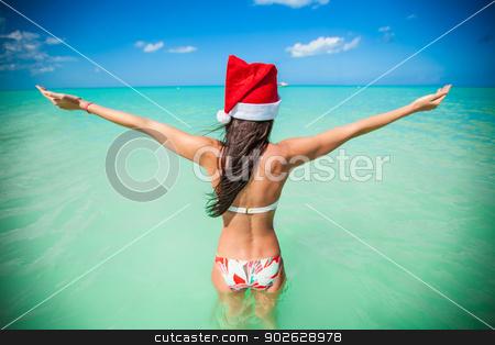 Back view of beautiful girl in santa hat walking like a bird stock photo, Back view of beautiful girl in santa hat walking like a bird by Dmitry Travnikov
