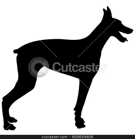 Doberman Silhouette stock vector clipart, A black silhouette of a Doberman Pinscher on a white background by Maria Bell