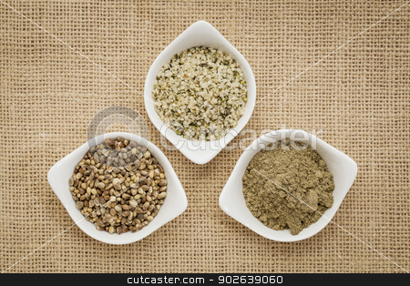 seeds, hearts and hemp protein stock photo, hemp products: seeds, hearts (shelled seeds) and protein powder in small ceramic bowls on burlap canvas by Marek Uliasz