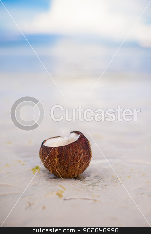 Coconut on tropical white sand beach in a sunny day stock photo, Coconut on tropical beach with white sand in a sunny day by Dmitry Travnikov