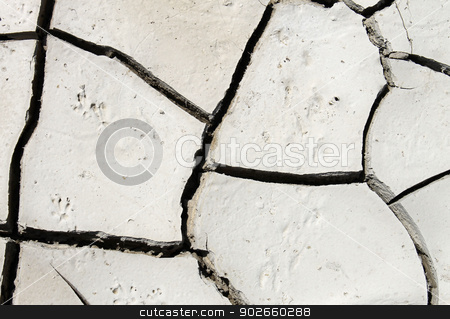 Abstract cracked background stock photo, Abstract background of cracked dry white mud. by Martin Crowdy