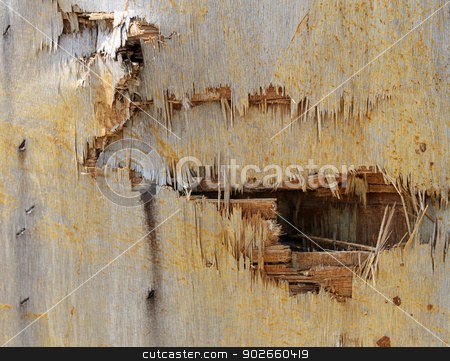 Broken wooden background stock photo, Abstract background of broken wood on old building. by Martin Crowdy