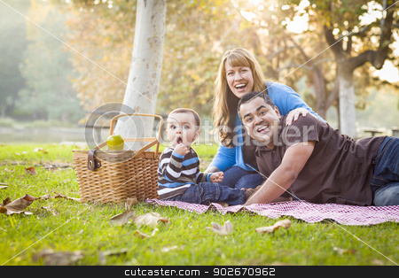 Happy Mixed Race Ethnic Family Having a Picnic In Park stock photo, Happy Young Mixed Race Ethnic Family Having a Picnic and Playing In The Park. by Andy Dean