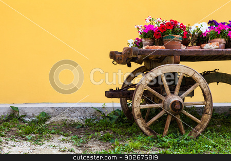 Tuscany flowers stock photo, Very elegant way to show flowers in Tuscany - Italy by Paolo Gallo