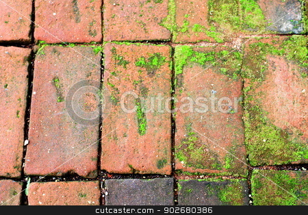 Bricks Walkway stock photo, Old red bricks walkway with some green moss. by Henrik Lehnerer
