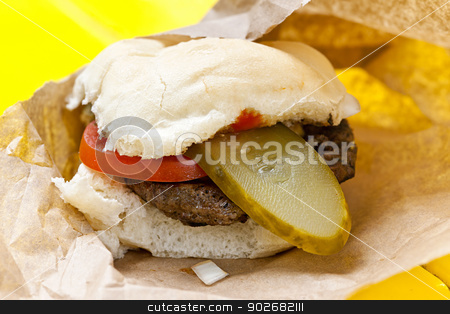 Hamburger with pickle and tomato stock photo, Homemade hamburger with pickle and tomato in paper wrapper by Elena Elisseeva