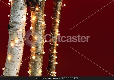 Christmas lights on birch branches stock photo, Red background with birch trees wrapped in Christmas lights by Elena Elisseeva