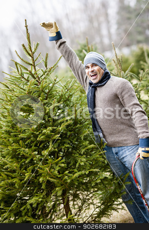 Man with Christmas tree on a farm stock photo, Man at cut your own Christmas tree farm showing tall spruce by Elena Elisseeva