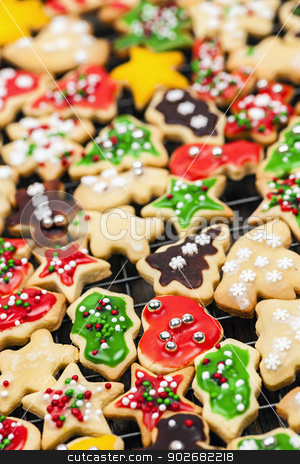 Homemade Christmas cookies stock photo, Freshly baked homemade shortbread Christmas cookies on cooling rack by Elena Elisseeva