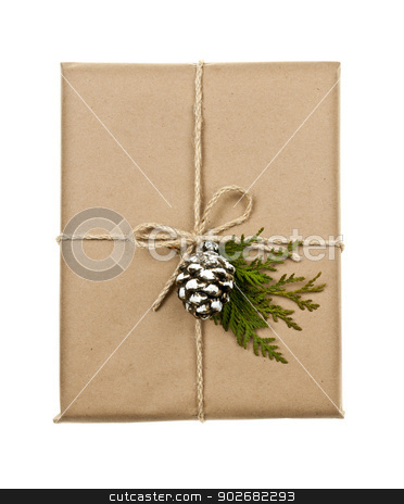 Christmas present in brown paper tied with string stock photo, Christmas gift in brown wrapping and string with pine cone decoration isolated on white by Elena Elisseeva