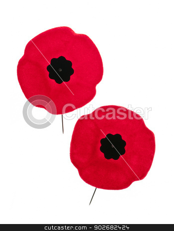 Remembrance Day poppies stock photo, Two red poppy lapel pins for Remembrance Day by Elena Elisseeva