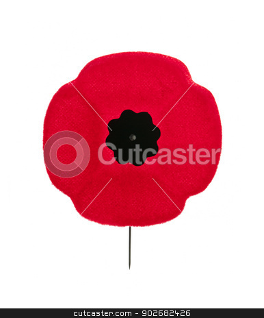 Remembrance Day poppy stock photo, Red poppy lapel pin for Remembrance Day by Elena Elisseeva