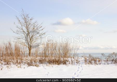 Winter shore of lake Ontario stock photo, Snowy shore of lake Ontario in Sylvan park Toronto by Elena Elisseeva
