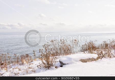 Winter shore of lake Ontario stock photo, Snowy winter shore of lake Ontario in Sylvan park Toronto by Elena Elisseeva