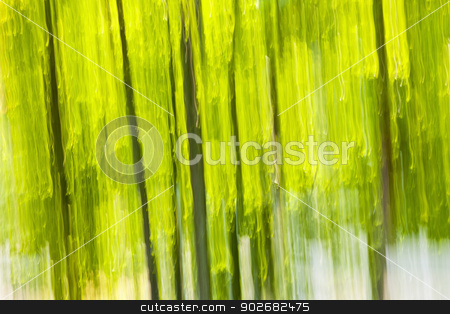 Green forest abstract background stock photo, Abstract background of green forest produced by in-camera motion blur by Elena Elisseeva