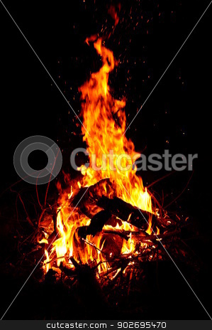 Camp fire stock photo, Fire from forest wood in the evening by 1000 Words Images