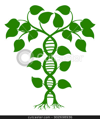 DNA nature plant stock vector clipart, Green tree illustration with the trees or vines forming a DNA double helix by Christos Georghiou
