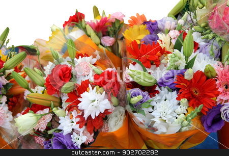 Bouquets of colorful flowers stock photo, Bouquets of colorful flowers isolated on a white background. by Martin Crowdy