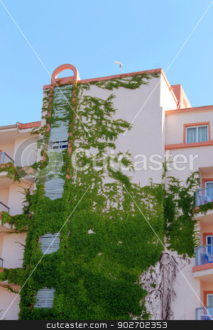 Ivy covered hotel building stock photo, Side view of ivy covered hotel building, Majorca, Spain. by Martin Crowdy