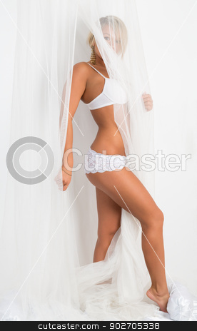 Tanned girl in lingerie stock photo, Tanned girl in lingerie on the bed under the veil. by Ruslan Kudrin