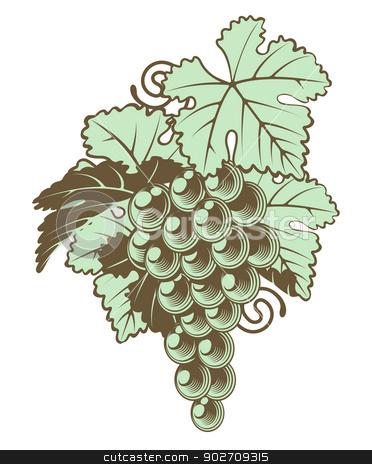 Bunch of Grapes on Vine stock vector clipart, An illustration of a bunch of grapes on a vine in a retro vintage woodblock style by Christos Georghiou