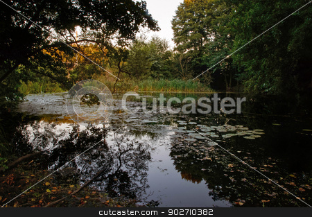 lake with reeds and water lilies leaves stock photo, lake with reeds and water lilies on a background of leaves of trees and shrubs by Yuriy Mayboroda