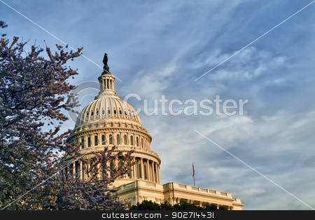 US Capitol Dome stock photo, The United States Capitol Building Dome on the mall in Washington D.C. by Kevin Tietz