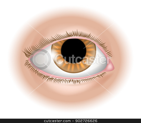 Eye body part illustration stock vector clipart, An illustration of a human eye body part, could represent sight in the five senses by Christos Georghiou