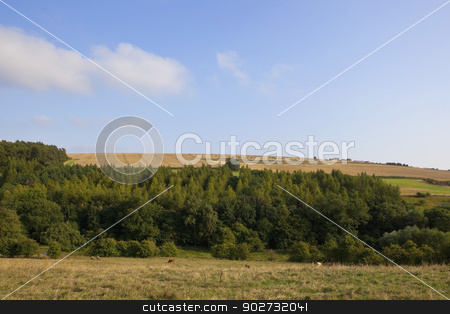 yorkshire wolds woods stock photo, an agricultural landscape with wheat fields woods and pastures under a blue cloudy sky in the yorkshire wolds england by Mike Smith