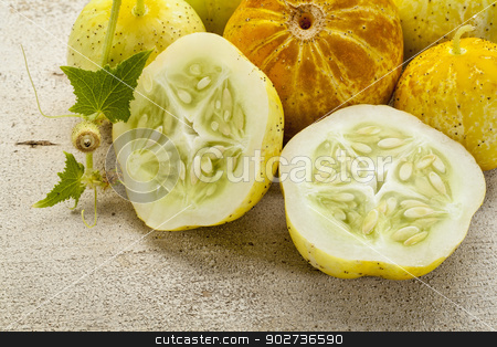 lemon cucumbers stock photo, lemon (or apple) cucumbers on rough white painted wood surface by Marek Uliasz