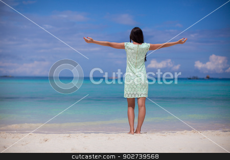 Back view of beautiful girl in dress walking like a bird on the beach stock photo, Back view of beautiful girl in dress walking like a bird on the beach by Dmitry Travnikov