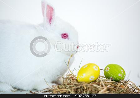 White bunny beside nest of foil wrapped easter eggs stock photo, White bunny beside nest of foil wrapped easter eggs on white background by Wavebreak Media