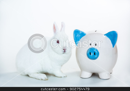 White bunny sitting beside blue and white piggy bank stock photo, White bunny sitting beside blue and white piggy bank on white background by Wavebreak Media