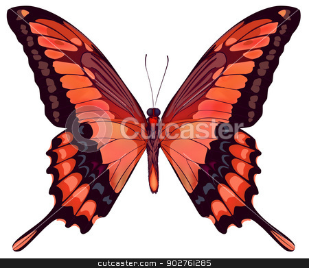 Beautiful vector isolated red butterfly stock vector clipart, Beautiful vector isolated red butterfly by Essl